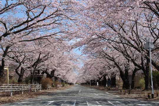 原発事故からの復興を自分たちの手で!福島県で「富岡復興ソーラー」