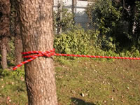 ロープワーク