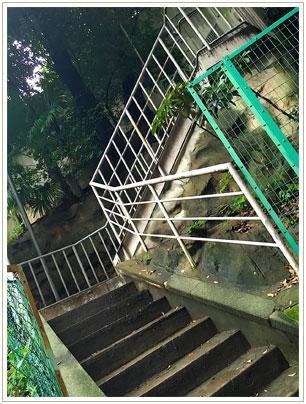 手前に神社参道の看板を見つけ、左奥へと階段を登ります。