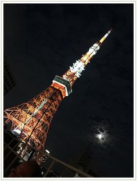 向かいのビルが壊された直後で、足元から東京タワーを眺められる数ヶ月の眺望