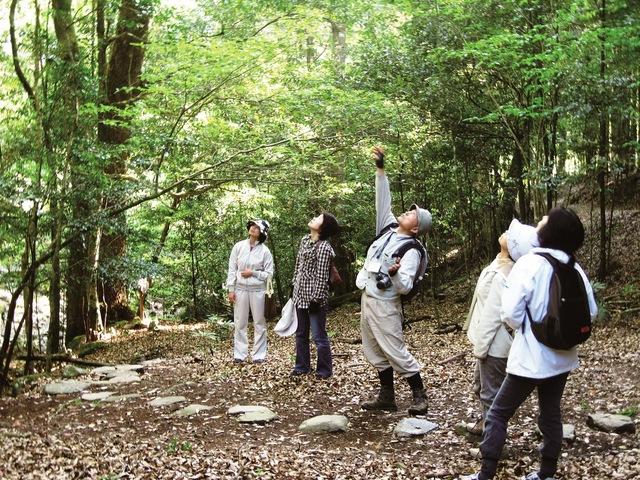 P11 森林セラピー
