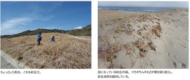 砂浜3_2