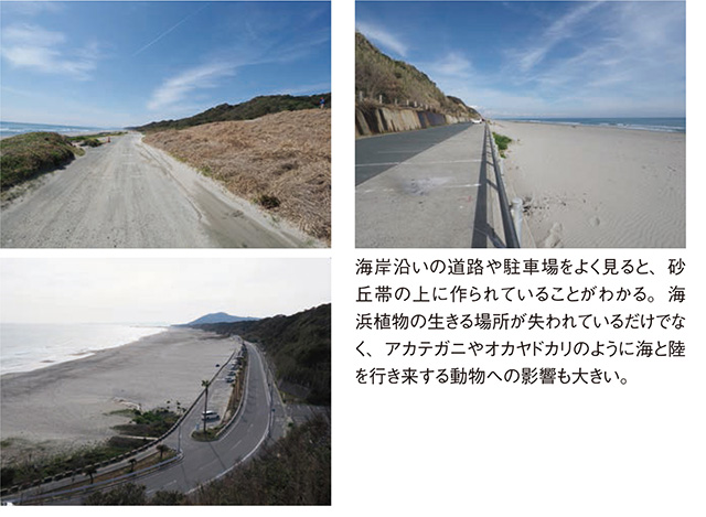 砂浜3_5