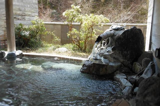 حسنا معسكر Nishitanzawa Onsen الصورة