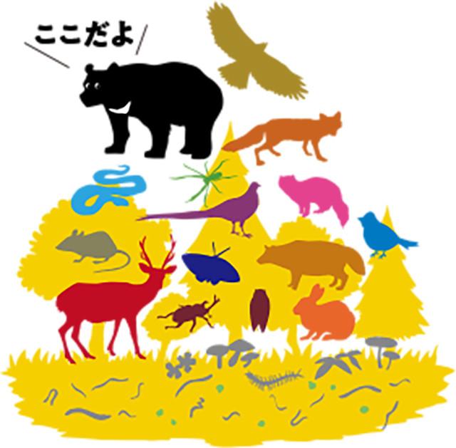 Tsukinowaguma