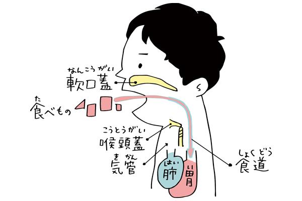 喉に食べ物が詰まるのは人間だけ!?人体に残された想定外な仕組み