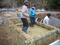 温床作り 落ち葉や竹粉に米ぬかやオカラと水を混ぜて踏み込む