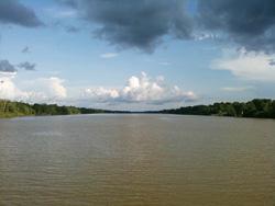 雄大なアマゾン川(ブラジル マナウスにて)