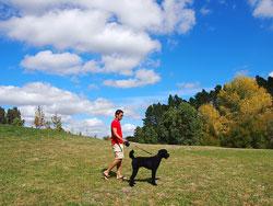 ニュージーランドで、愛犬ピノとオーガストさん