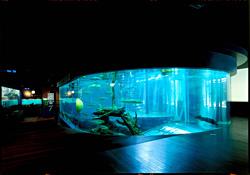 山梨県立富士湧水の里水族館中央の2重回遊水槽