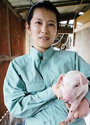 養豚場にて