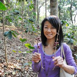 森を育てる森林農法で作っているコーヒー