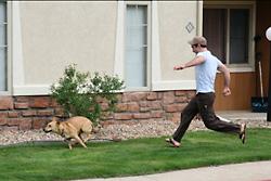 愛犬とのベストショットというダニエルさん、インスティチュート前で