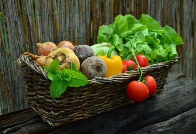 家庭菜園「一坪で野菜を育てる」方法・コツについて