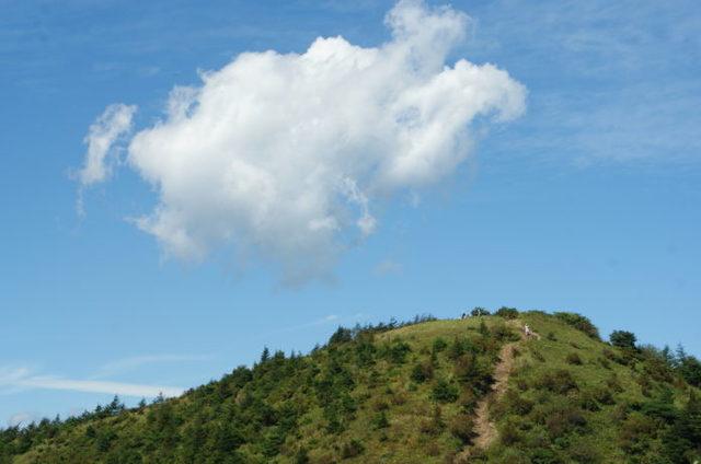 飯盛山|贅沢な展望と高山植物が楽しめる初心者向け登山!