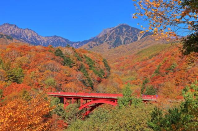 八ヶ岳で紅葉を見ながら登山!日本の秋を堪能できるスポット7選