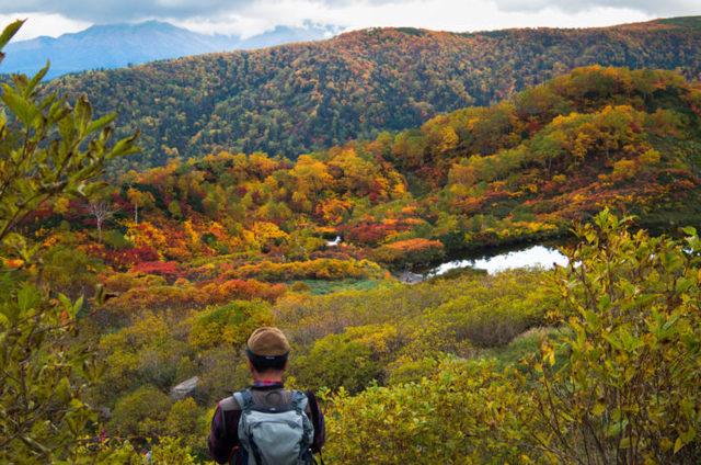日本で一番早い!大雪山の絶景紅葉情報【2017年版】