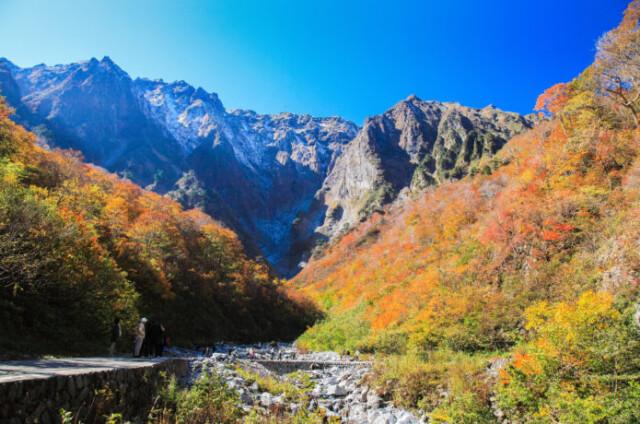 岩壁と紅葉のコントラストが美しい!谷川岳の紅葉情報【2017年版】