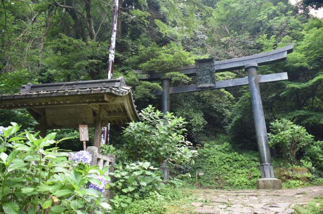 太平山|四季折々の自然が美しい!人気スポットの見どころ紹介