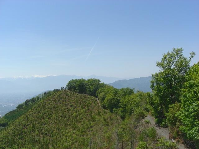 甲州高尾山|ワイナリーと天空の尾根を歩く!登山コース・温泉まとめ
