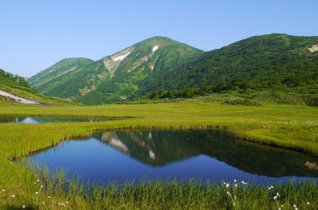 火打山|たくさんの植物と湿原、大パノラマの絶景が堪能できる日本百