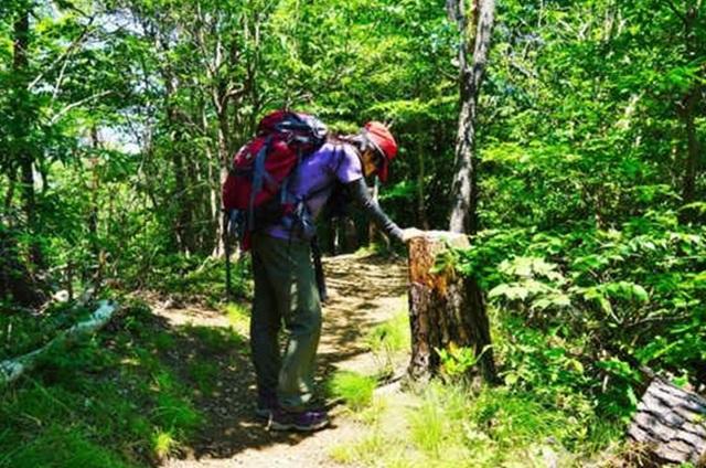 熱中症対策は登山前も大切!夏山を安全に楽しむ対策とは?