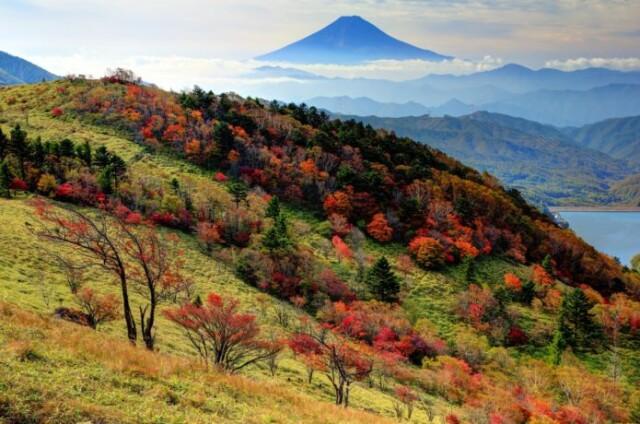 紅葉と富士山のコラボレーション!大菩薩嶺の登山コース