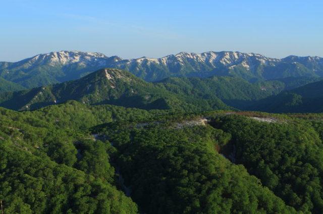 白神岳|世界遺産のブナの森を歩く!登山コース情報と注意ポイント