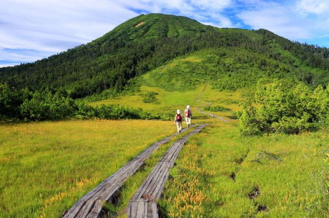 日本百名山と美しい尾瀬を満喫できる人気コース3選