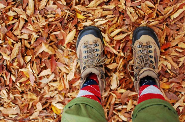 快適さがずいぶん変わる!?登山用靴下の選び方とおすすめ製品