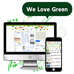 lave green
